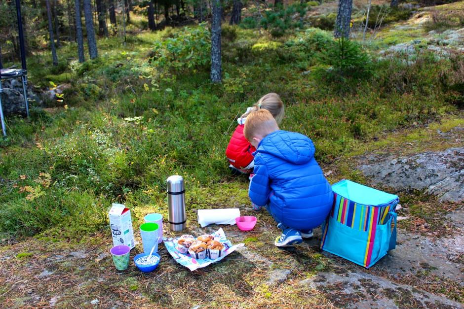 picknick kanelbullar och blåbär med mjölk