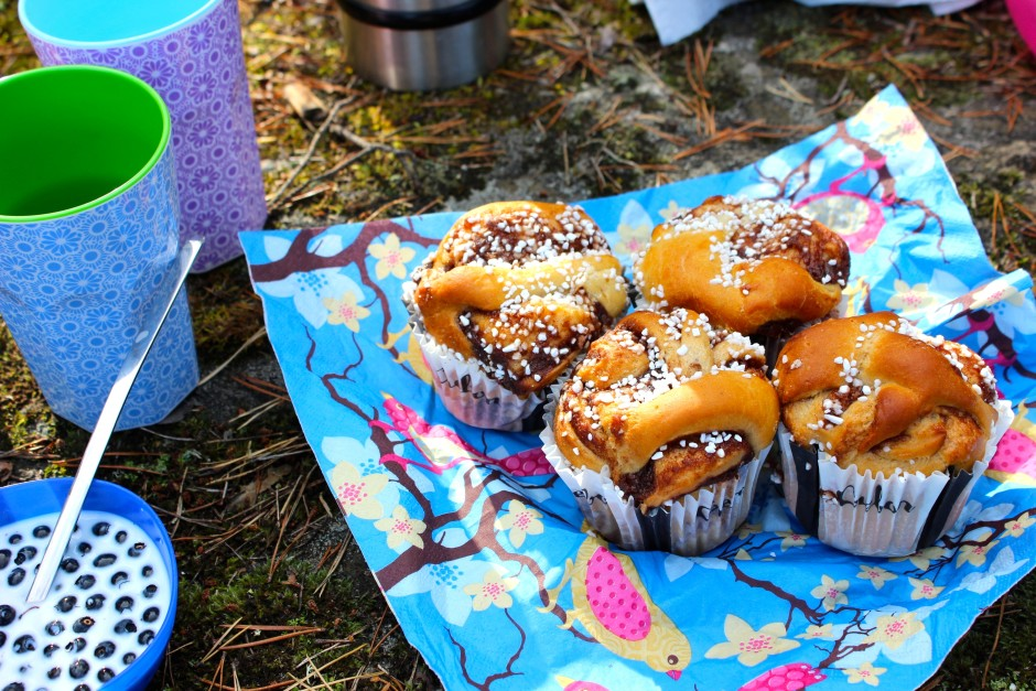 kanelbullar picknick blåbär med mjölk