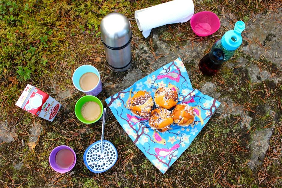 kanelbullar, blåbär med mjölk picknick